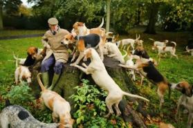 Andrew Jerman y sus perros a la espera del comienzo de la nueva temporada de caza.