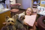 Perros especialmente entrenados ayudan a jóvenes pacientes a lidiar con el miedo en clínicas dentales de Estados Unidos.