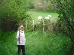 Pastoral hike, France