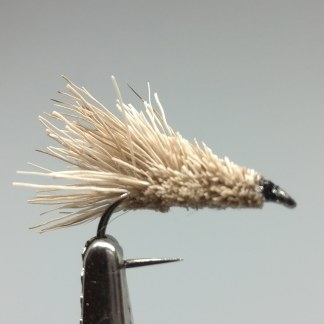 simple-sedge-bl