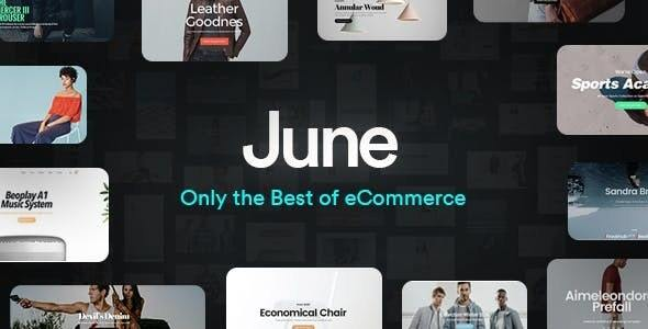 June – Multi-Reason Responsive WooCommerce Theme – WP Theme Download