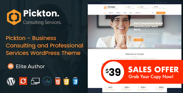 Pickton – Consulting WordPress Theme – WP Theme Download