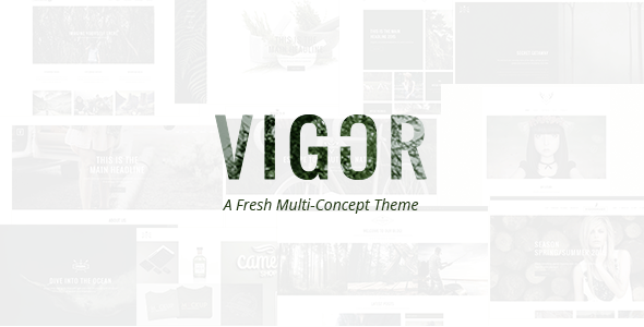 Vigor – Traditional WordPress Theme – WP Theme Download