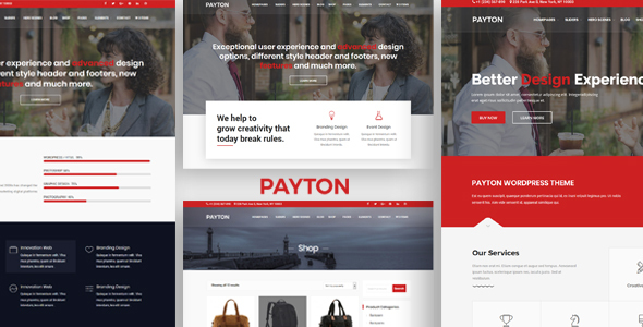 Payton – Industry Ingenious WordPress Multipurpose Theme  – WP Theme Download