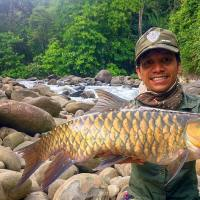Fly Fishing for Mahseer in Sabah Borneo
