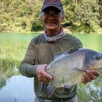 Pacu on Fly Series
