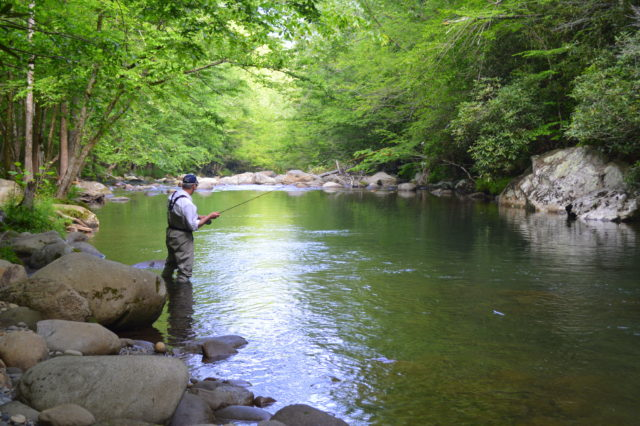 Spring Fishing, Gatlinburg Fly Fishing Guides, Pigeon Forge Fly Fishing Guides and Trips,