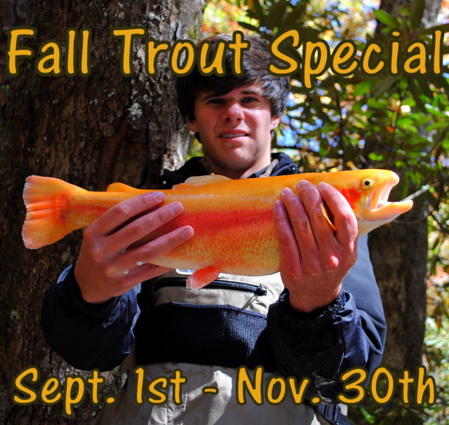 Fall trout Fishing Smoky Mountains, Fly Fishing the Smokies, Tuckasegee River Trout Fishing Guides, Bryson Citys best guides