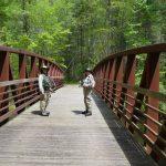 Iron Bridge Hazel Creek