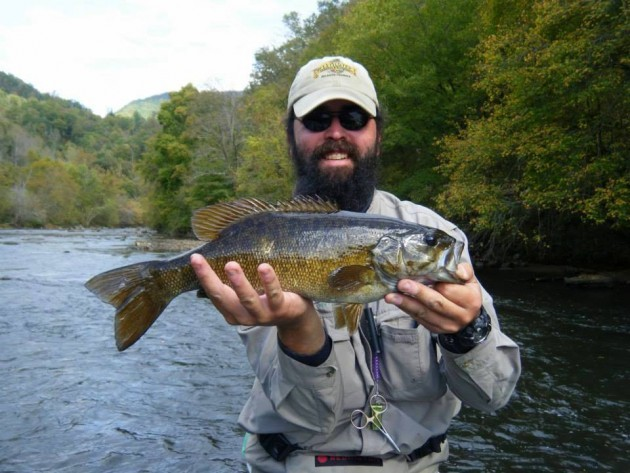 Little tennessee river smallmouth bass fly fishing fly for Trout fishing in tn