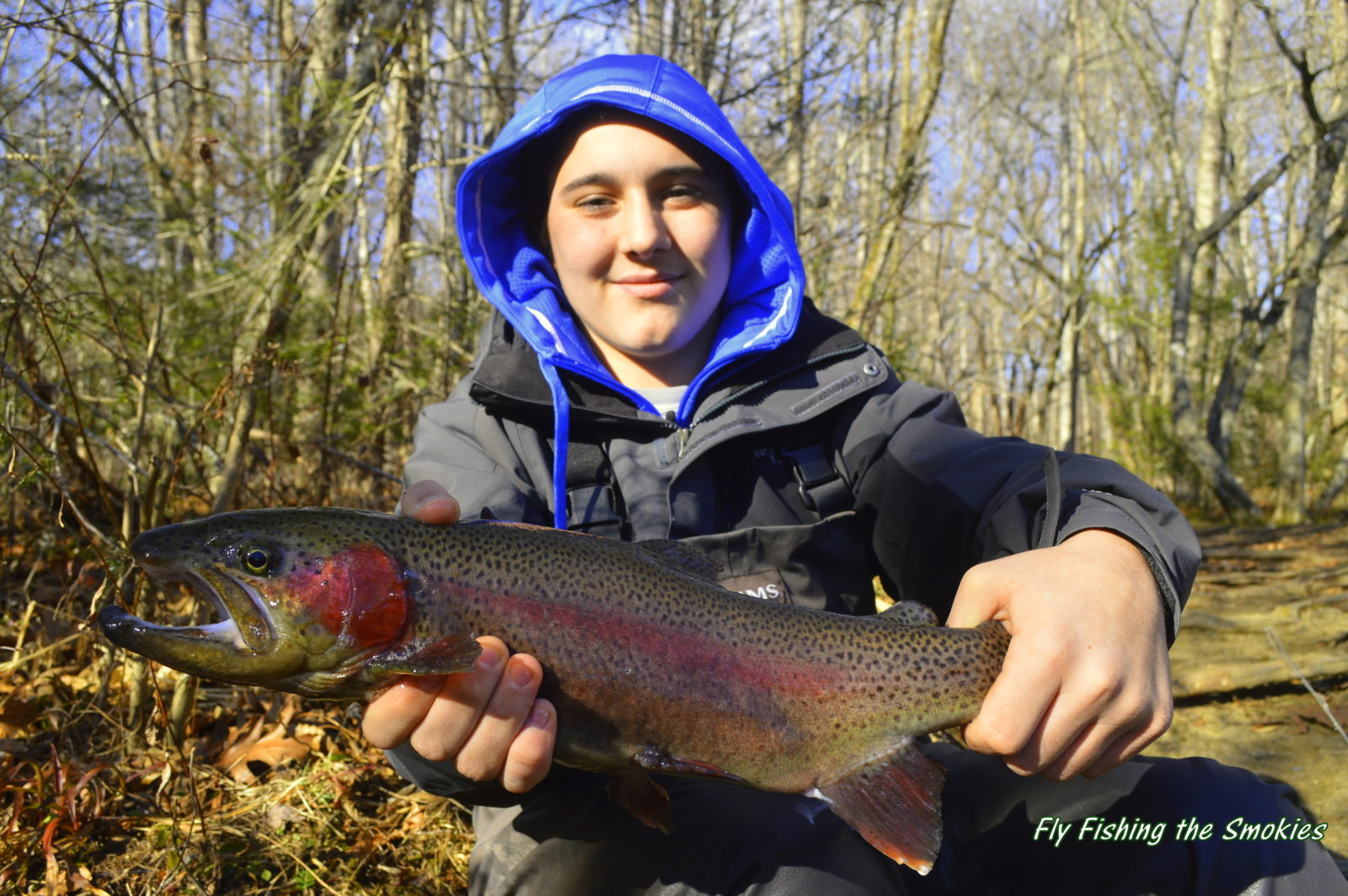 Winter trophy trout special fly fishing smoky mountains for Pigeon forge fishing