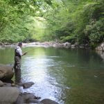 Spring Break Specials Fly Fishing the Smoky Mountains Gatlinburg Cherokee Pigeon Forge Bryson City, Best Trout Fly Fishing Guides in Gatlinburg Pigeon Forge Cherokee Bryson City Smoky Mountains