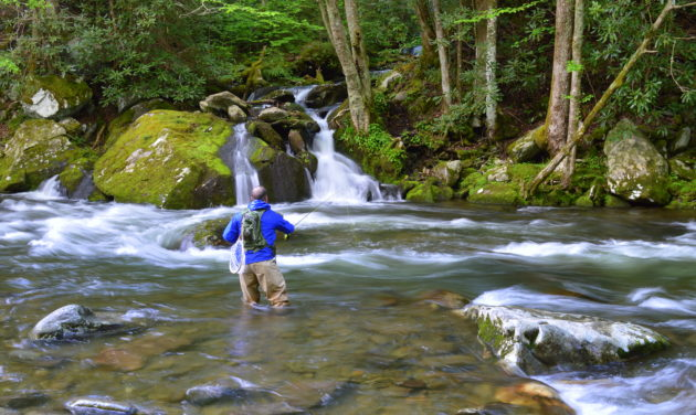 Wade Trips, Fly Fishing the Smokies, Fly Fishign the Great Smoky Mountains National Park