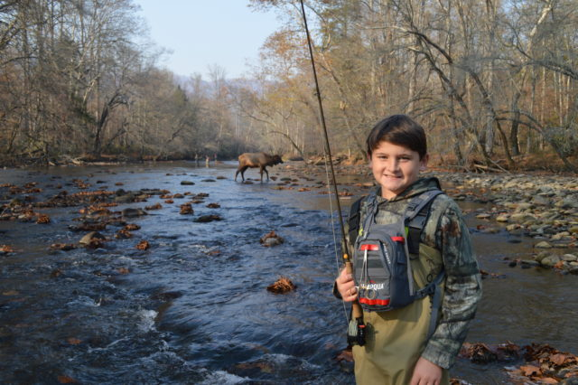 Great Smoky Mountains Fishing Report November 24th, Fly Fishing the Smokies