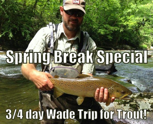 Fly fishing guides in gatlinburg bryson city great smoky for Fishing in gatlinburg tn
