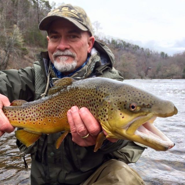 March Madness Fishing Report, Big Brown Trout Tuckasegee River, Great Smoky Mountains Fishign Report mid March, Fly Fishing the Smokies,