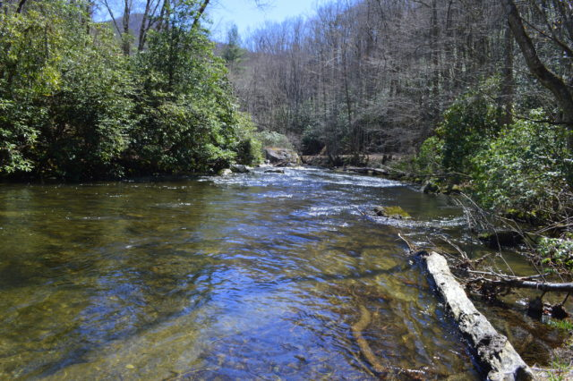 Hazel Creek Fly Fishing Report, Hazel Creek Fly Fishing Guides and Trips,
