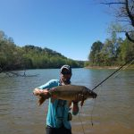 Carp Fly Fishing Guides, Carp Photo Gallery, Carp Fly Fishing North Carolina Tennessee