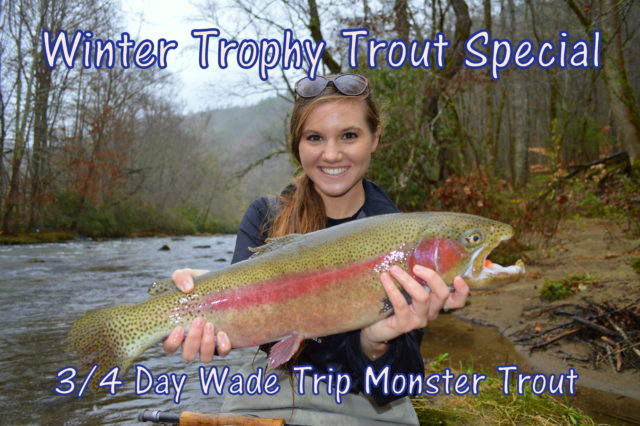 Highlands Cashiers Fly Fishing Guides and Outfitter, Winter Trophy Trout Special, Winter Fly Fishing Great Smoky Mountains,