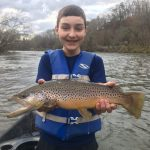 Fly Fishing the Smokies, Tuckasegee River Brown Trout Bryson City North Carolina