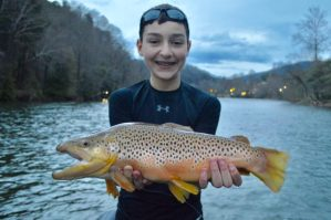 Tuckasegee River Fly Fishing, Fly Fishing the Smokies, Tuckasegee River Brown Trout, Tuckasegee River Fly Fishing Report