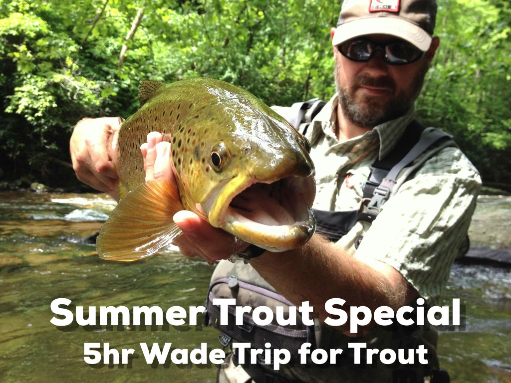 Bryson City Fly Fishing, Bryson City Fly Shop, Summer Trout Special, Fly Fishing Guides Great Smoky Mountains Gatlinburg Pigeon Forge Cherokee Bryson City Trout Fishing Guides