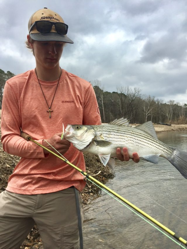 Fly fishing the Smokies guide, Jason Rail