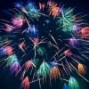 【徹底攻略】立川昭和記念公園花火大会2018のおすすめ&穴場スポット5選