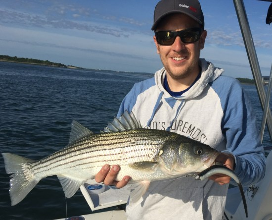 Early spring light tackle striped bass in Boston Harbor