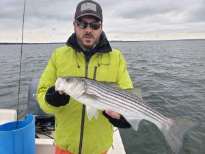 Nice Early Season Cape Cod Schoolies