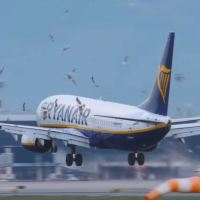 VIDEO - MASSIVE BIRDSTRIKE RYANAIR B737 AT BARCELONA AIRPORT