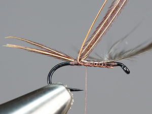 Simple emerger step 4