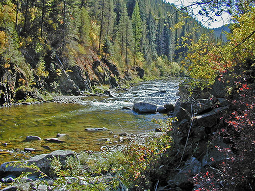 Kelly Creek in North Idaho