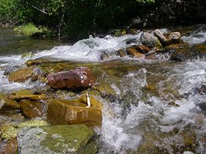 Cinammon Creek Waterfall