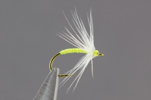 Caddis Green Soft Hackle