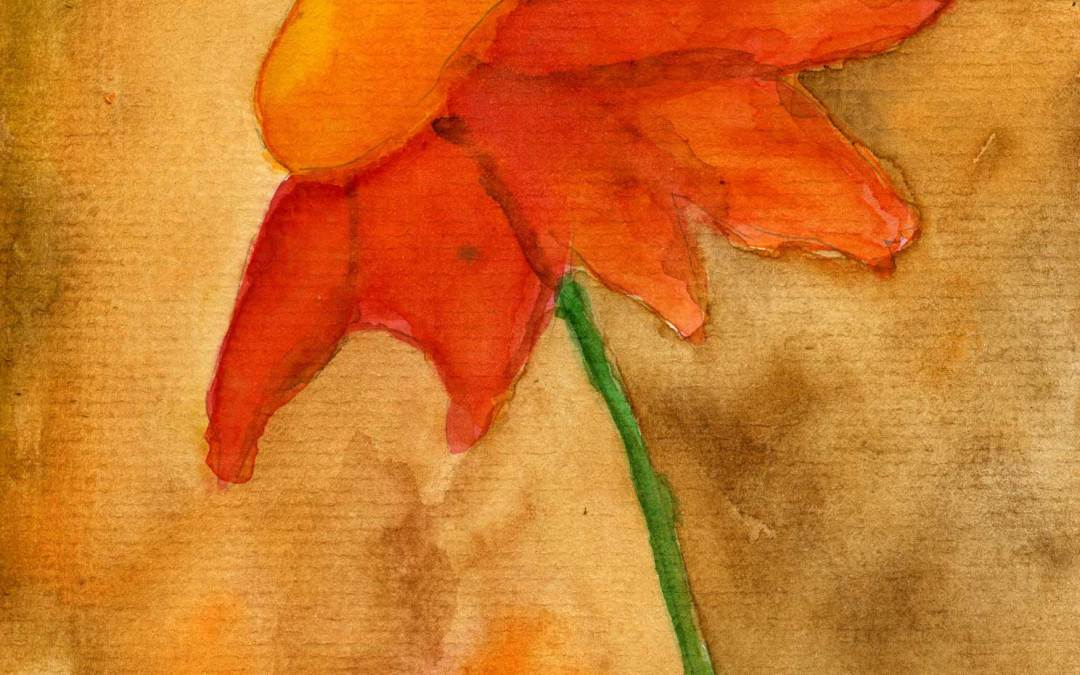 Orange Flower – Daily painting #511 (SOLD)