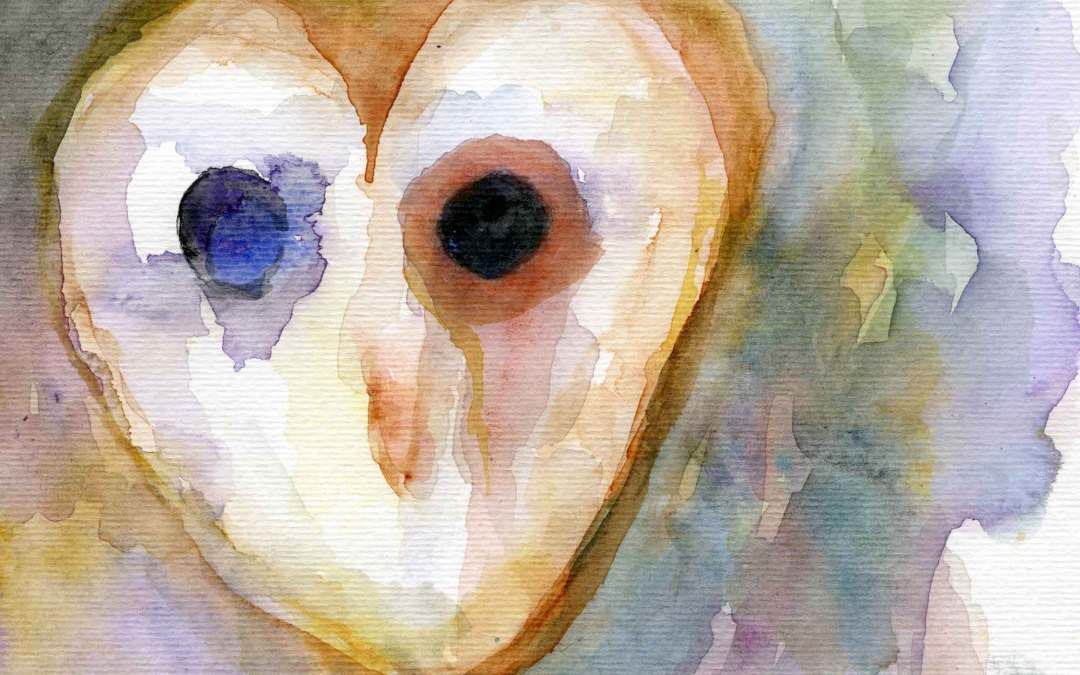 Owl – Daily Painting #590 (SOLD)