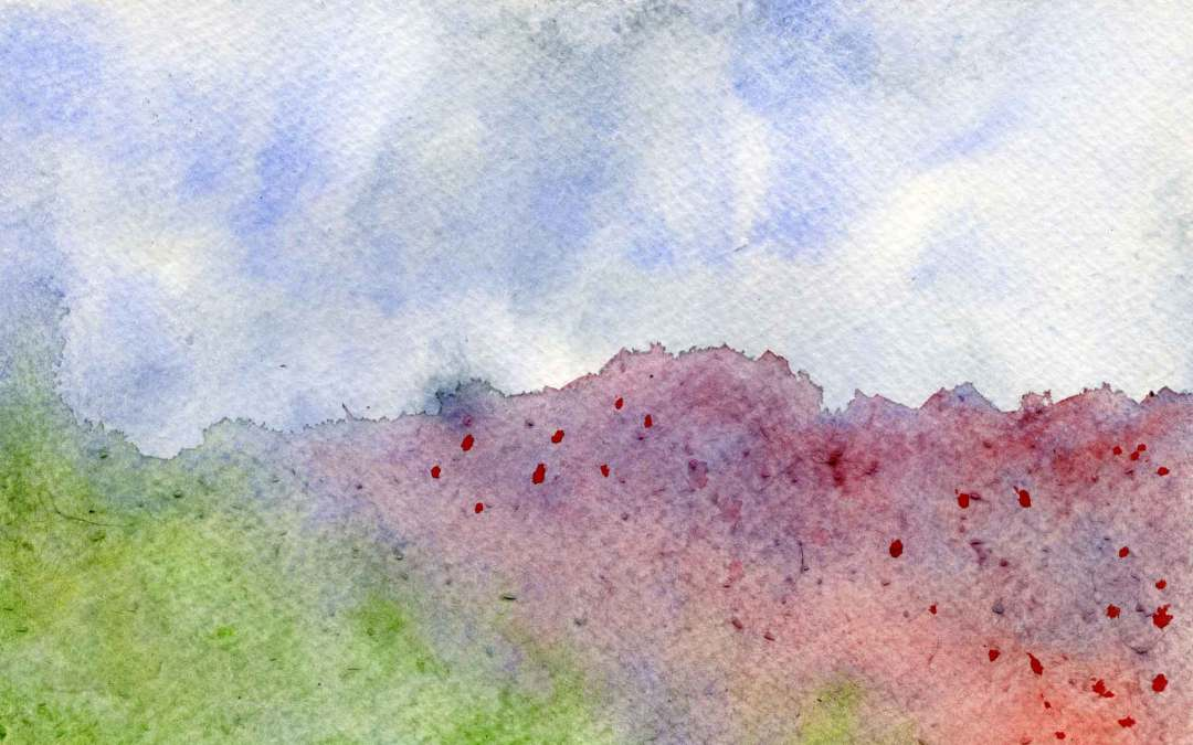Poppy field – Daily painting #648 (SOLD)