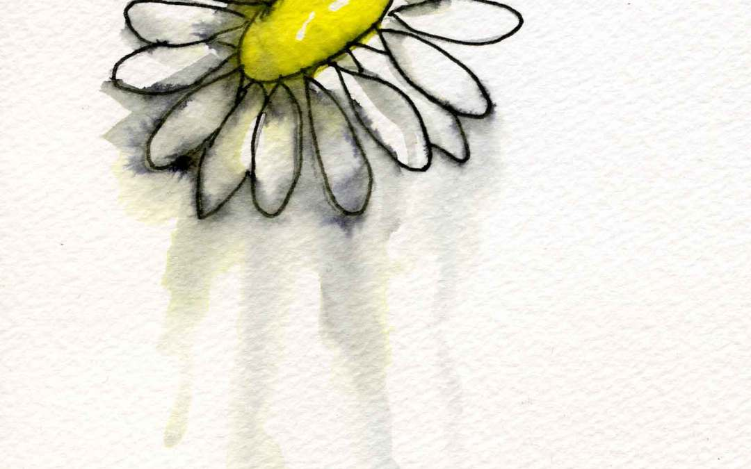 Daisy – Daily painting #675 (SOLD)