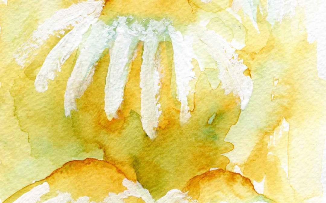 Daisy – Daily painting #678 (sold)