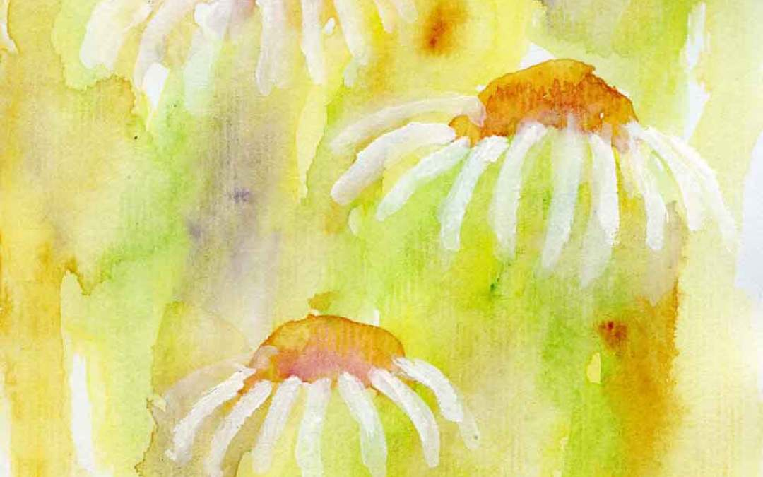 Daisies #9 – Daily painting #716 (SOLD)