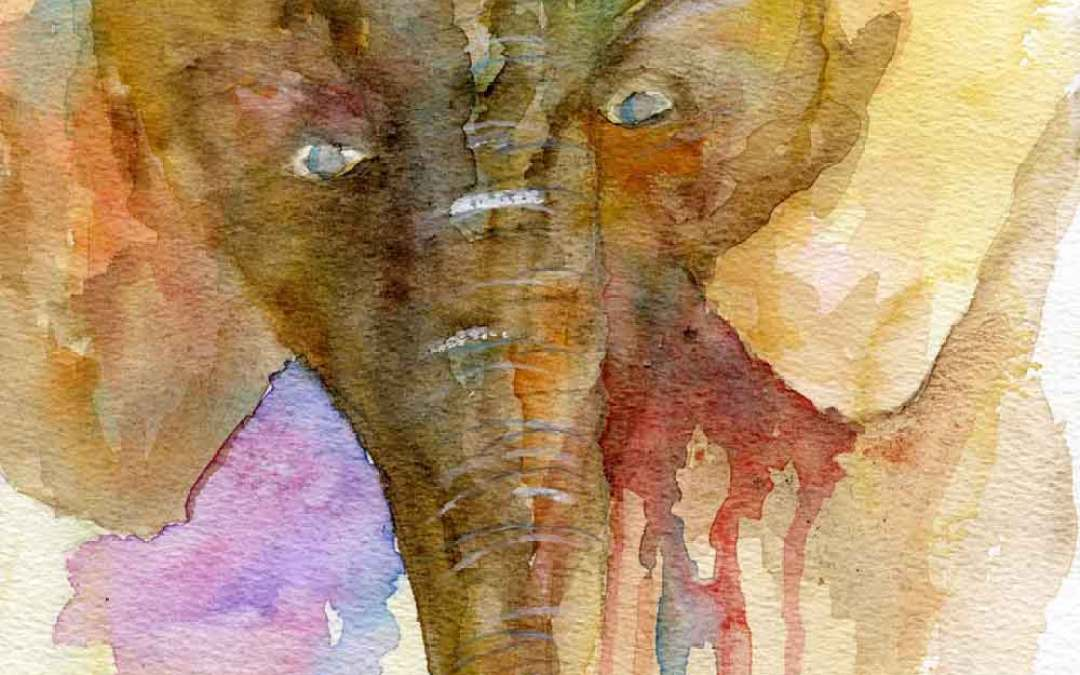 Brown Elephant – Daily Painting #863