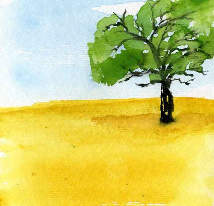 Green Tree in field – Daily painting #1145