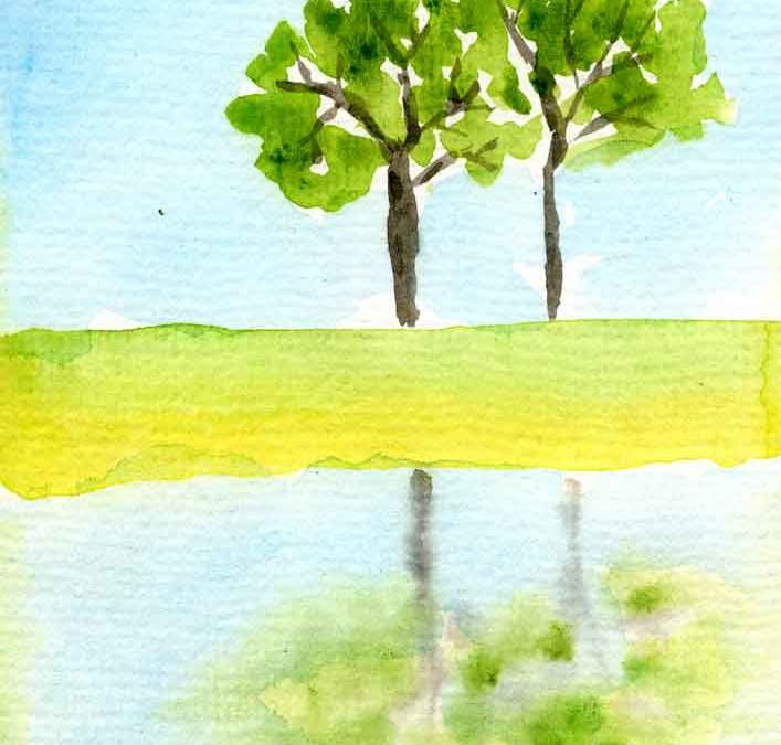 Tree reflection – Daily paintign #1188