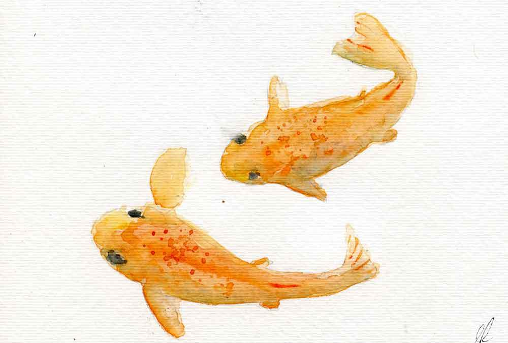 Two Goldfish (Koi)  (#072)