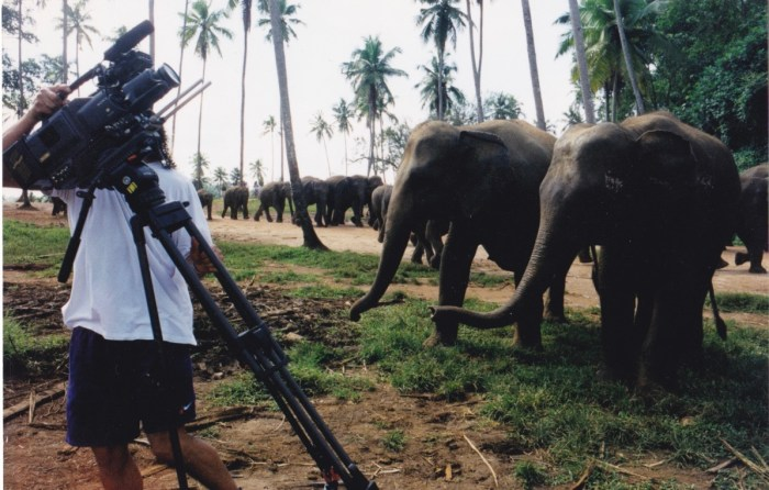 TVTS - Sri Lanka 1998