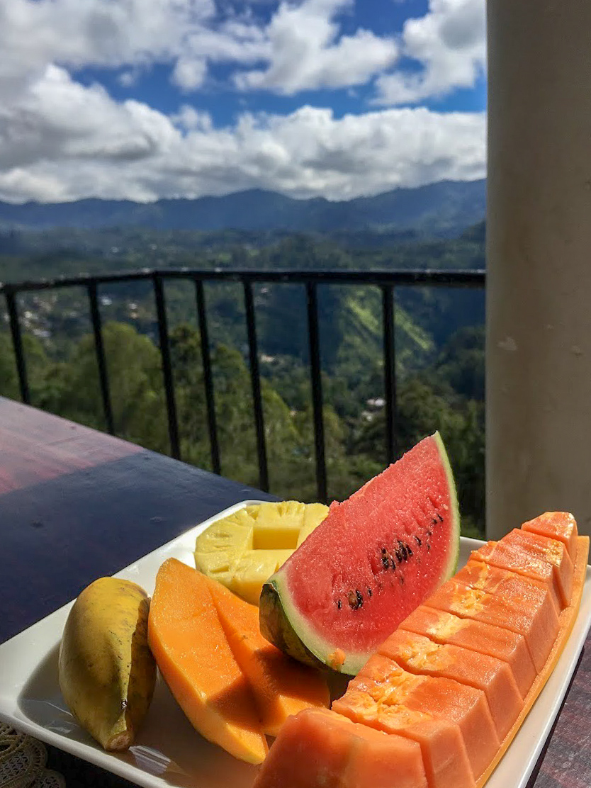 a plate of fruit with papaya, melon and pineapple on a table at Will Guest Homestay overlooking the hills of Ella, Sri Lanka