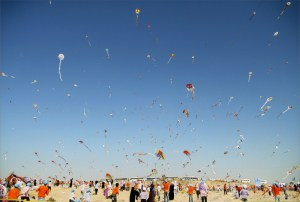 Guinness Record Breaking Event in Gaza, Photo by Eman Mohammed