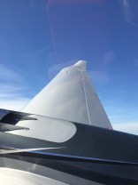 Wing up