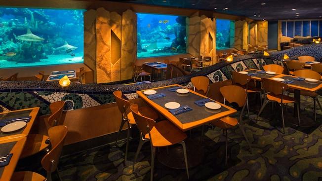 coral-reef-restaurant-gallery00.jpg